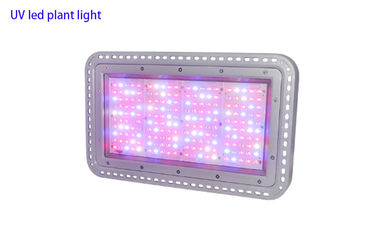 Outdoor Led spots